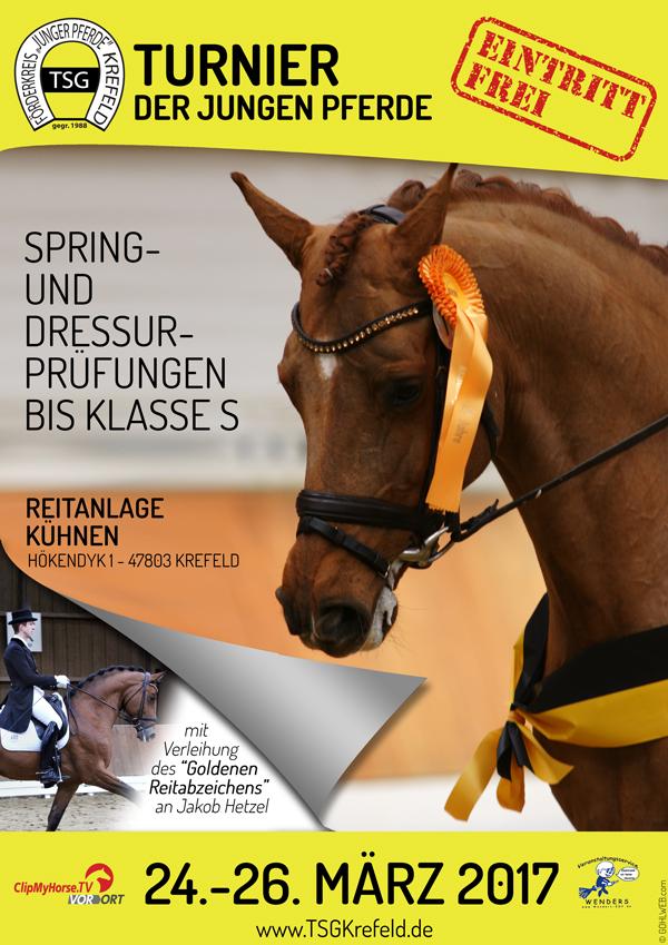 Junge Pferde Turnier 2017